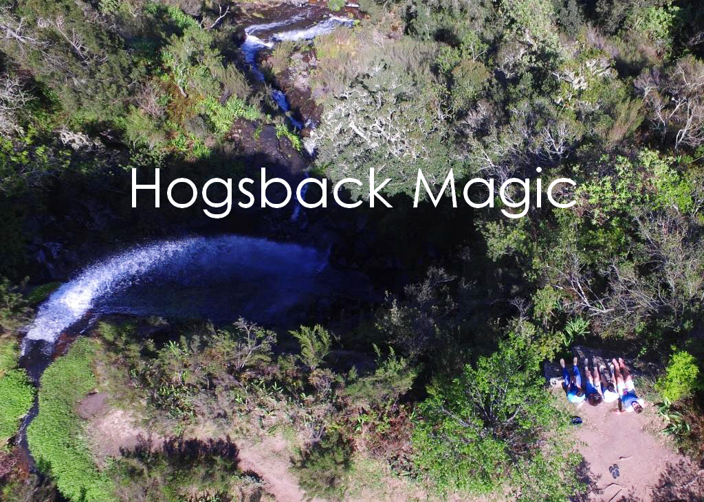 Hogsback Magic in Spring