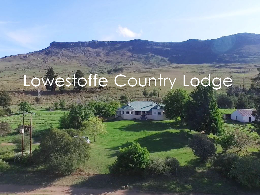 Lowestoffe Country Lodge – The Ultimate Family Farm Getaway