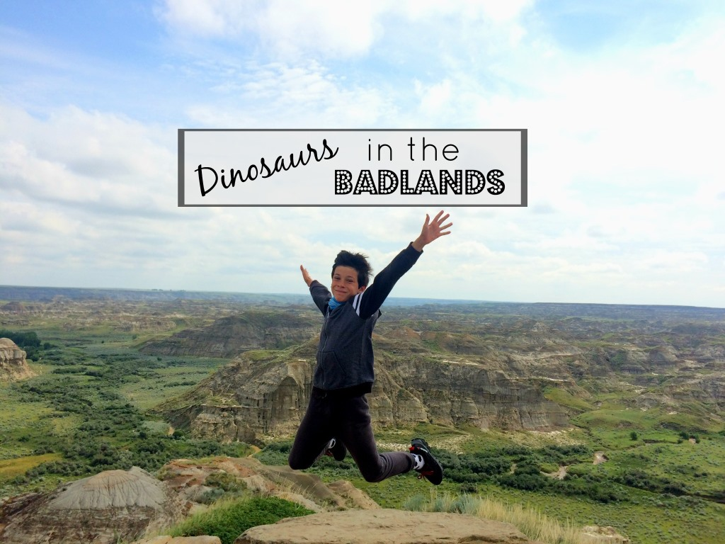 Canada Diary Part 14 – The Badlands and Another Unhappy Camper