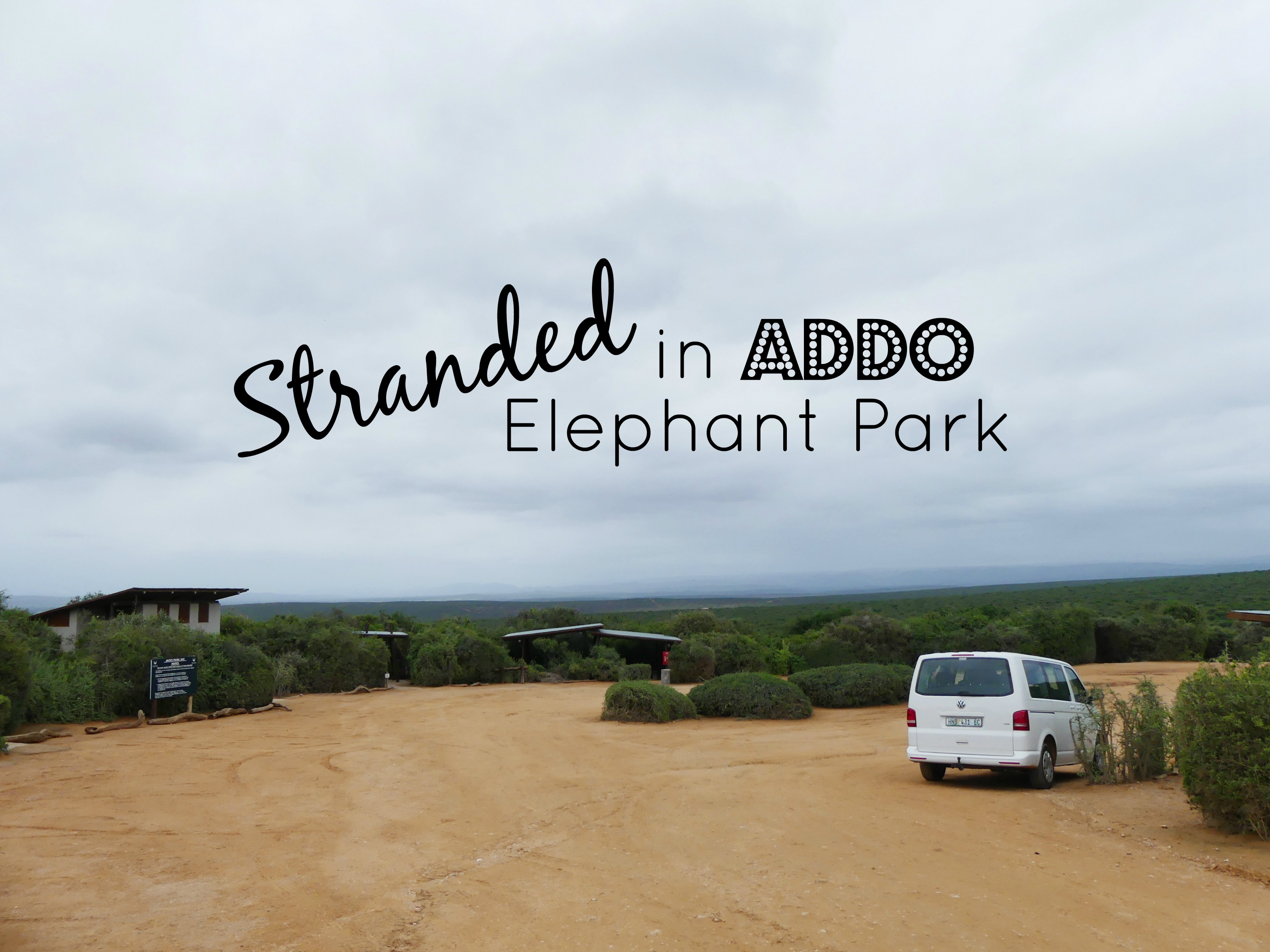 Stranded Without Car Keys in Addo Elephant National Park