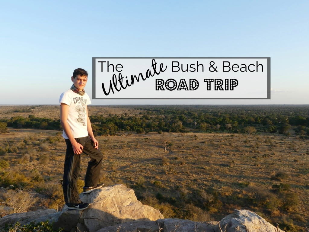 The Ultimate Bush and Beach Road Trip to Kruger and Mozambique (Part 1)