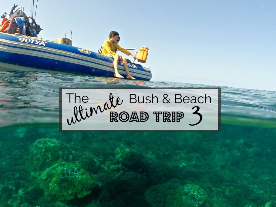 The Ultimate Bush and Beach Road Trip to Kruger and Mozambique (Part 3)
