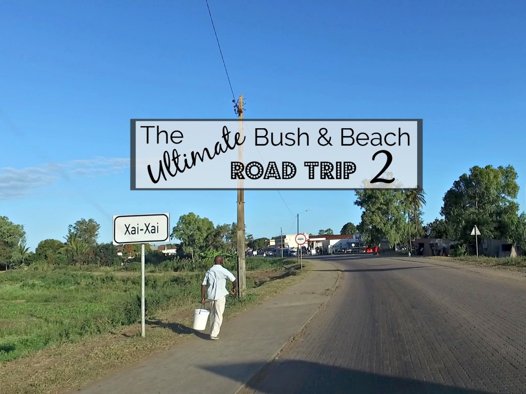 The Ultimate Bush and Beach Road Trip to Kruger and Mozambique (Part 2)