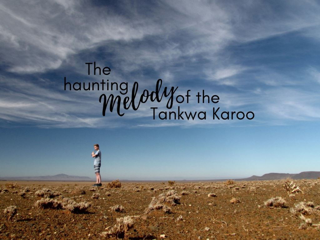 The Haunting Melody of the Tankwa Karoo